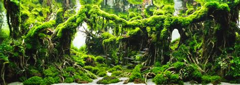 Aquascape Forest by Top 5 Aquascape Forest Style 2019 Aquascape Paludarium