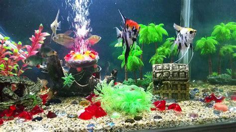 fish tank decoration youtube