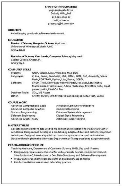 Resume For Programmer by Programmer Resume Sle Resume Writing Service