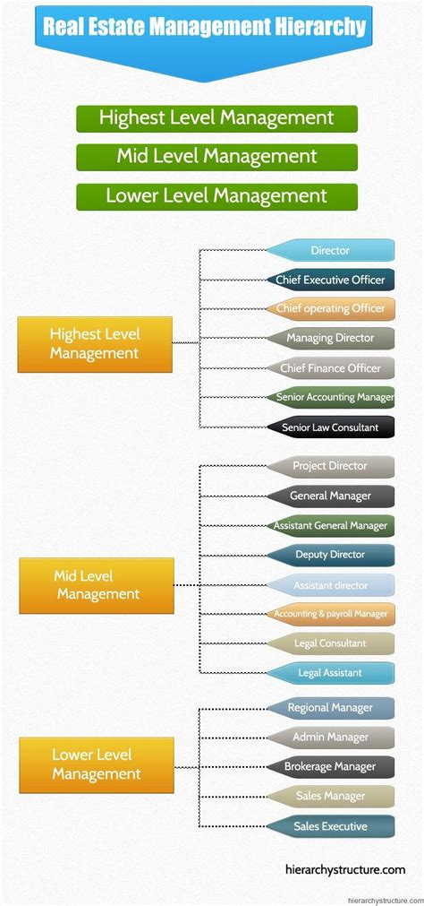 real estate management hierarchy organizational