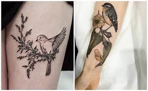 Tatuajes de pájaros, significado y diseños de todos los tatuajes de aves