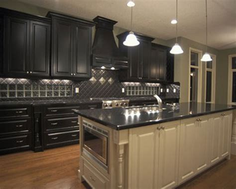 Black Cabinets Kitchen ? The New Way Home Decor : Gothic