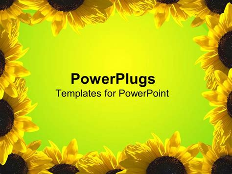 powerpoint template yellow sunflower frame  green