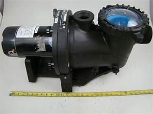 1081 Pool Pump