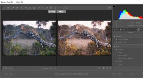 in lightroom and photoshop adobe puts profiles and presets front and center extremetech