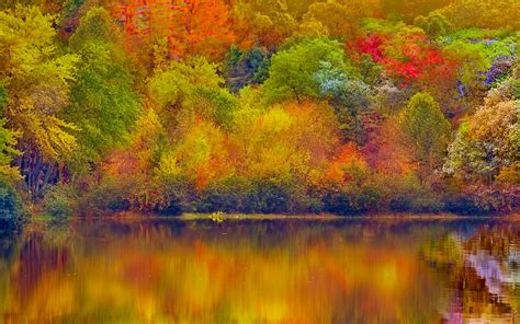 Colourful Autumn Background by 21 Season Wallpapers Backgrounds Images Autumn