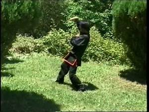 WUDANG SNAKE STYLE FORM with Tseng, Yun Xiang - YouTube ...