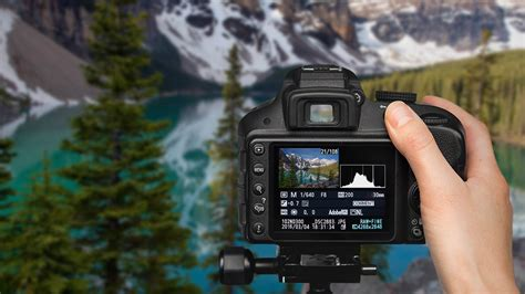 The 17 Best Online Photography Courses For All Skill