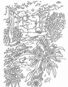 Ausmalbilder Erwachsene Natur 695 Malvorlage Erwachsene