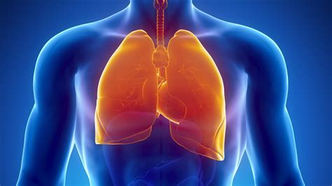 lung cancer lung cancer  asbestos