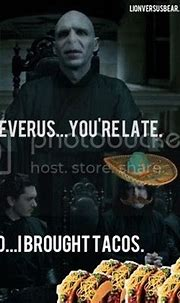 Your Daily Dose of Funny: January 9 - Severus Snape's Birthday