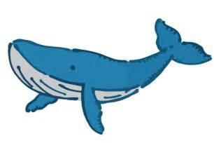クジラ:クジラのイラスト | かわいいフリー素材が無料のイラストレイン