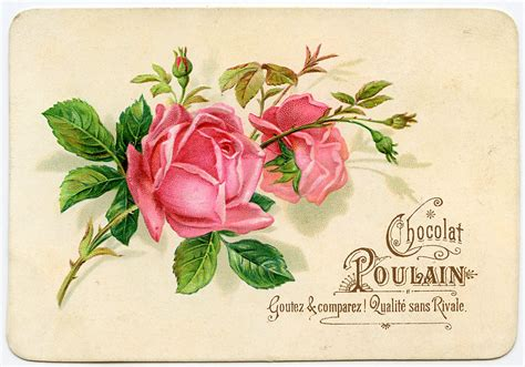 vintage graphic french roses  graphics fairy