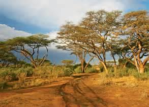 Kenya Landscape