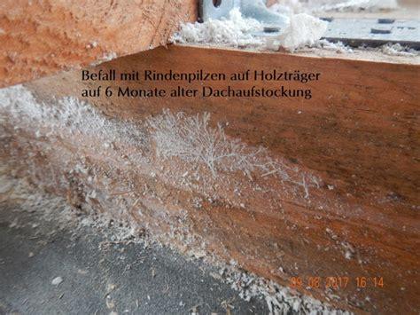 schimmel neubau dachstuhl schimmel im dachstuhl m 246 gliche ursachen und ma 223 nahmen