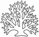 Seaweed Coloring Five Printable Educative sketch template