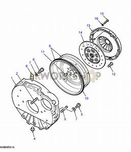 Flywheel  U0026 Clutch - 300tdi