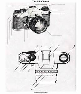 Entry Assignment  Parts Of A Film Slr Camera