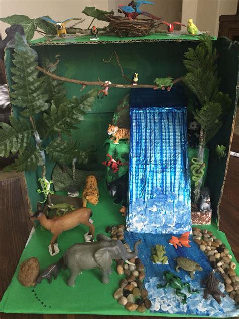 rainforest diorama rainforest project diorama kids