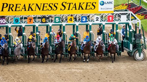 preakness stakes    stream tv channel