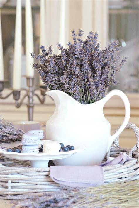 lavanda in vaso lavanda e vaso bianco arredamento shabby