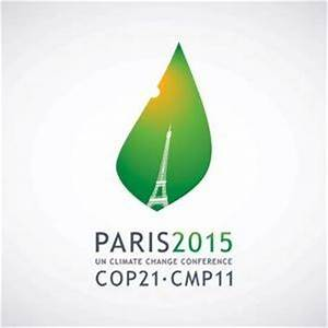 What will success for Paris, COP 21 look like? | Carbon ...