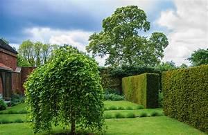 Englischer Garten Pflanzen : englischer garten anlegen sch ne ideen f r die sch nsten ~ Articles-book.com Haus und Dekorationen