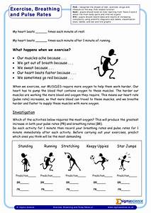 Y6 Exercise  Breathing And Pulse Rates