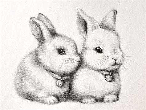 original bild kaninchen haeschen hasen illustration etsy