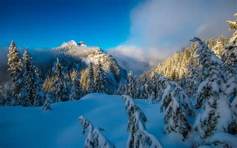 Wallpaper Winter Mountains, Forest, Canada, Hd, Nature, #3822