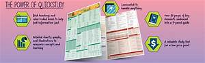 Medical Math  Laminated Reference Guide  Quick Study