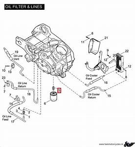 Buell Oil Diagram   17 Wiring Diagram Images