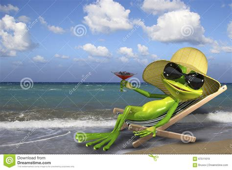 chaise longue plage frog in a deckchair on the stock illustration