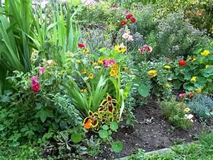 Blumen Im Juli : blumen ratgeber tipps haus ~ Lizthompson.info Haus und Dekorationen