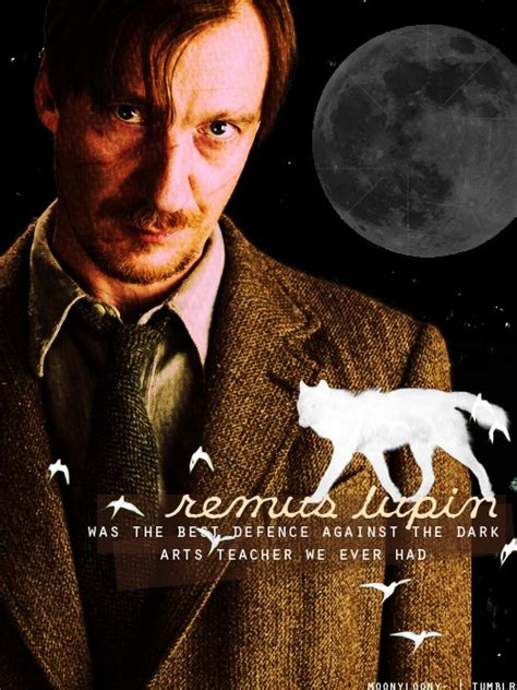 harry potter fanart remus lupin