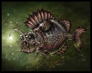 angler | Illustration - fish | Pinterest | Angler fish ...