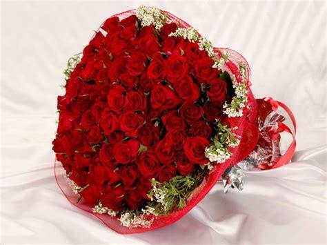 rose bokeh gift szukaj  google czerwone roze