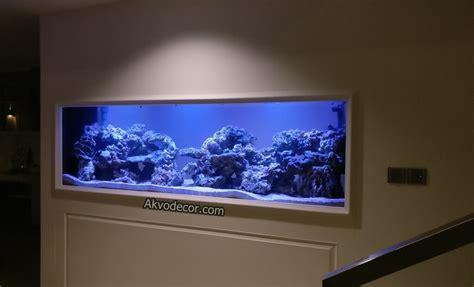 galeri desain aquarium air laut