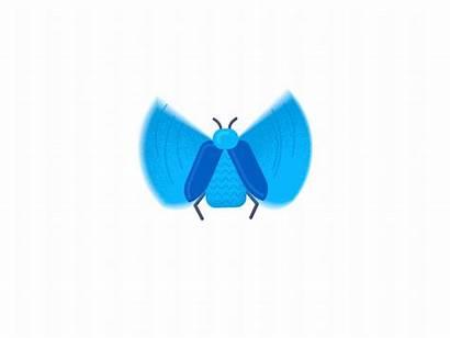 Animation Letter Animated Alphabet Dribbble Typeface Motion