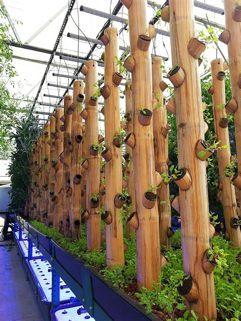 Bamboo Vertical Garden by Bamboo Gardening Greenhouse With Hydroponics