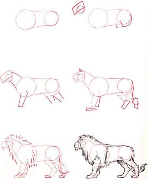 lot  animal drawing tutorial drawing pinterest