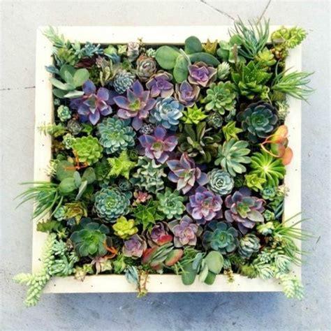 Vertikaler Garten Echte Pflanzen by 40 Kreative Vorschl 228 Ge Wie Sie Bilderrahmen Selber Bauen