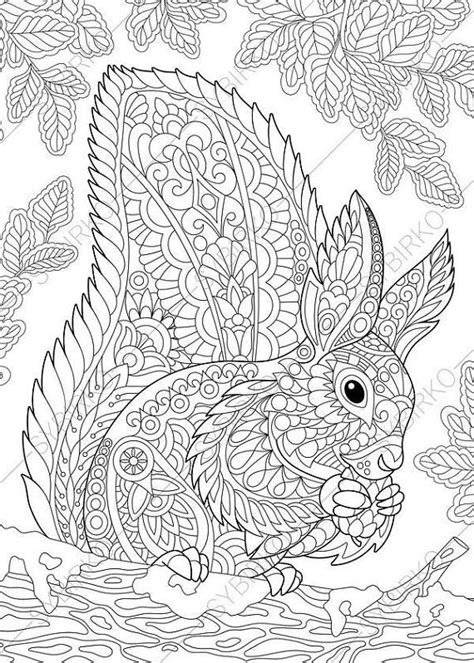 coloring pages  adults squirrel adult coloring pages animal coloring pages digital jpg