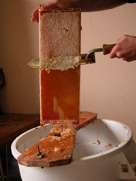 honey extraction wikipedia