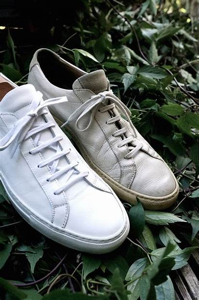 Common Projects Achilles Low Trainers Trainer