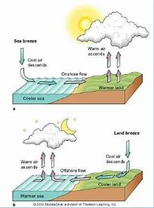 The Circulations Of Land And Sea Breeze