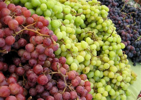 How Do You Like Them Apples A Guide To Wine Varietals For