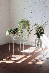 Indoor, Plant, Stands
