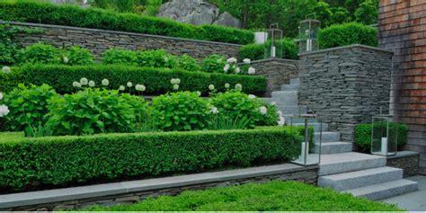 garden image design carex garden design by carolyn mullet