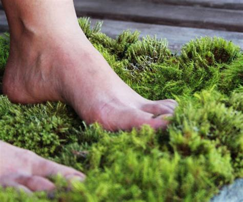 moss shower mat moss shower mats live the water that drips of you